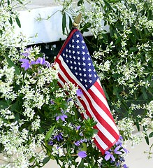 Flag and Flowers (pjpink) Tags: smalltown mountaintown highlands northcarolina nc september 2018 summer pjpink 2catswithcameras americanflag flag