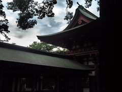 Roof Complex of Hikawa Shrine Gate (Eshke04) Tags: shrine hikawa gate roof complex architecture old traditional historical sacred tree sky contrast light reflection shadow saitama japan