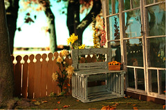Garden (kinmegami) Tags: diorama doll dollhouseminiature ooak roombox cupoche obitsu11 obitsu mattel hybrid fall polymerclay paper miniatureflowers