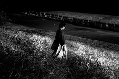 PA216981F Sunlight (soyokazeojisan) Tags: japan osaka city bw light people blackandwhite street monochrome digital olympus em1markⅱ 40150mm 2018