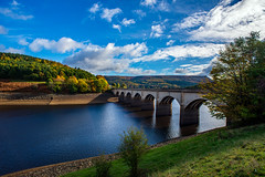 Ladybower Reservoir (David Towerzey) Tags: ladybower viaduct water tree clouds sky grass bamford