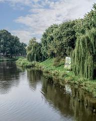 's-Hertogenbosch (Iwokrama) Tags: paysbas shertogenbosch boisleduc brabantseptentrional rivière arbres parc