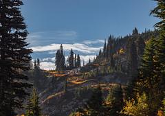 Naches Peak Loop (ChristinaForever) Tags: nachespeakloop mountrainier mountains landscape trees fall