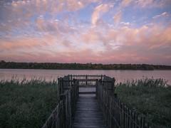 PONTON. (Mélodie Descoubes) Tags: pink nature water chill bordeaux france green clouds sky lumix lumixgx80 panasonic trip travel travelphotography