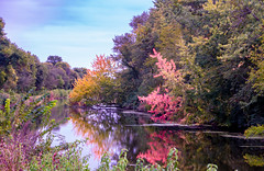 Tuesday Afternoon (114berg) Tags: 02october18 hennepin canal fall color geneseo illinois