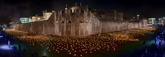 Beyond The Deepening Shadow (NoVice87) Tags: london tower greatwar remembrance torch flames panorama night lowlight tripod