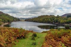 Llyn Cynwch (Howie Mudge LRPS BPE1*) Tags: llyncynwch dolgellau gwynedd wales cymru uk landscape nature ngc nationalgeographic travel sony sonya7ii sonyilce7m2 sonyalpha sonyalphagang sonylove fe2870mmf3556oss