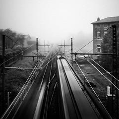 Va et reviens (gaëlFineArt) Tags: blackandwhite noiretblanc winter hiver brume brouillard fog