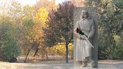 Red roses (Dragan*) Tags: statue sculpture man soldier stone marble antunaugustinčić redrose flower trees outdoor