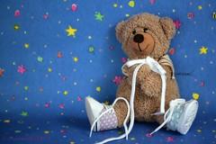 CLUMSY BEAR FLIP ||  FLIP IS EEN KLUNZIG BEERTJE (Anne-Miek Bibbe) Tags: knot knoop schoenveters shoelaces bear teddybear beertje teddybeer beer speelgoedbeer nounours canoneos700d canoneosrebelt5idslr annemiekbibbe bibbe nederland 2018 happyteddybeartuesday