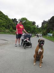 IMG_2428 (dastridc) Tags: loveparkrun porirua parkrun park sport running bothamley newzealand