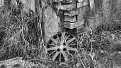 DSC08865 (O KDUKO) Tags: sonyilce3000 araraquara blackandwhite blackandwhitephotography pictureoftheday blackandwhitephoto photography bnwcaptures monochrome monochromatic bw bwstyles artgallery visualart bwphotooftheday photoshoot bwstyleoftheday aesthetics streetphotography arts