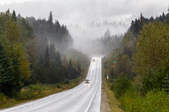 Viewtiful road (The eclectic Oneironaut) Tags: 2018 6d canada canon eos selected thompsonnicolab britishcolumbia canadá ca road rain weather wet mist tree