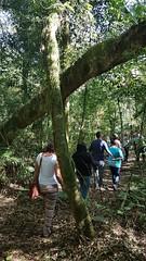 Slow Tour Brasil Roteiro Igrejinha RS (69) (slowtourbrasil) Tags: sustentabilidade passeios natureza roteiros experiência slow tour brasil nature