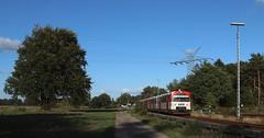 AKN bei Ulzburg Süd (Canonfan92) Tags: eisenbahn zug akn triebwagen baum ulzburg süd