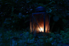 Spooky (ryorii) Tags: darkness light candlelight tealight lamp wood forest night nature fears childhood infanzia paura paure buio oscurità bosco foresta notte lampada candela luce spooktacular smileonsaturday