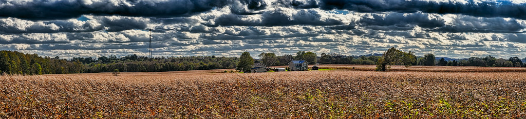 The World's most recently posted photos of cornfields - Flickr Hive Mind
