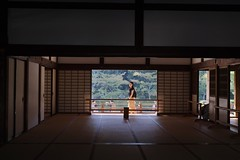 inside out (ababhastopographer) Tags: kyoto arashiyama tenryuji zen hojo tatami afternoon 京都 嵐山 天龍寺 禅 大方丈 疊 午後 西日 sunray 日差し
