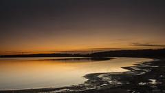 Golden Light (davepickettphotographer) Tags: grafhamwater grafham water cambridgeshire perry uk huntingdonshire light landscape landscapes