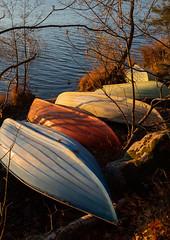 Boats in Autumn colors (Antti Tassberg) Tags: syksy vene espoo jupperi landscape pitkäjärvi suomi ranta autumn beach boat fall finland järvi lake scandinavia shore uusimaa fi