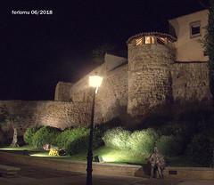 Salamanca 20180627 14 Muralla romana (ferlomu) Tags: arquitectura ferlomu murallaromana nocturna salamanca