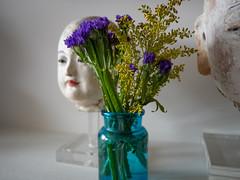 Quiet Calm (Mildred Alpern) Tags: heads statues flowers vase shelf bottle indoors