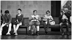 Seated personalities (gro57074@bigpond.net.au) Tags: bodylanguage personalitytypes psychology f14 105mmf14 artseries sigma d850 nikon personalities waiting cbd circularquay sydney monotone mono monochrome bw blackwhite people seated street candid