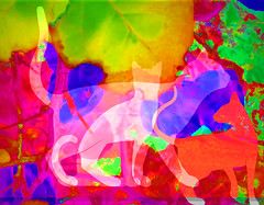 Going On A Nature Walk (soniaadammurray - On & Off) Tags: digitalphotography manipulated experimental collage picmonkey abstract nature walk cats colours hss sliderssunday artchallenge
