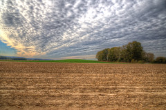 Autumn light (blavandmaster) Tags: sky 6d kleuren hemel wolken vand 24105 landscape zonsondergang colours harmonic himlen lyng countryside lumière landbrug sonnenuntergang skyer wasser landwirtschaft weser hill canon raps ciel eos 2018 tyskland autumn melle nuages water rapeseed interesting landskabet field germany allemagne christiankortum landschaft duitsland solnedgang himmel deutschland clouds niedersachsen tree sunset october fields coucherdesoleil herbst eos6d landbouw