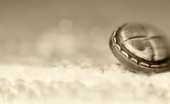 Shy button... (Elisafox22) Tags: elisafox22 sony nex6 lensbaby composerpro 50mm optic doubleglass macro 10macro hmbt button leather monochromebokehthursday monotone shadows sepia mono photoshop light bokeh dof patterns textures monochrome stilllife indoors elisaliddell©2018
