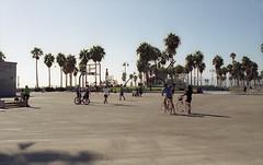 Venice Beach (fraser_west) Tags: film 35mm analog colour venicebeach basketball court palmtrees travel california people bikes wetheconspirators canon eos3