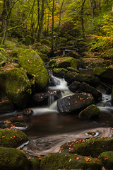 A quiet stream (Crimmy_Photography) Tags: 1855 autumn england fall nationalpark october padleygorge peakdistrict uk xe2 fuji greatbritain derbyshire leaves stream flow water river gorge valley trees wood forest rocky rock rocks polariser ndfilter longexposure waterblur blur