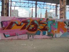 493 (en-ri) Tags: moanr rosso arancione bianco azzurro parco dora torino wall muro graffiti writing