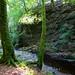 Den of Ayleth