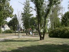 Prieros_e-m10_1017185431 (Torben*) Tags: olympusm25mmf18 olympusomdem10 rawtherapee brandenburg prieros trees bäume spielplatz playground mittelstrase