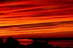 Sunset (baypeep) Tags:
