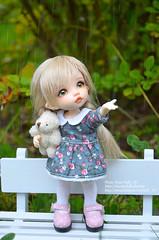 Alice (fluffy_347) Tags: пукифи пукифианте фейрилэнд bjd bjdgirl bjdphoto balljointeddoll pukifee pukifeeante doll dolls dollphotography dollphotogallery