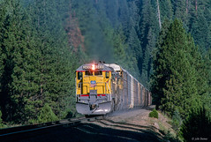 UP 2430 East at Spring Garden, CA (thechief500) Tags: featherriverroute railroads up springgarden ca usa us