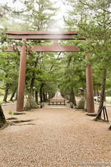 Izumo Shrine (takashi_matsumura) Tags: izumo shrine shimane japan nikon d5300 出雲神社 sigma 1750mm f28 ex dc os hsm
