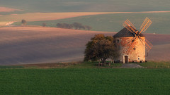 Windmill at sunrise (Paweł Gałka) Tags: windmill landscape landschaft sunrise light green grass rural autumn golden hour tree field south moravia shadows brown