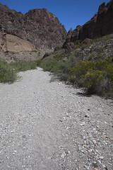 2015 - Texas (Mark Bayes Photography) Tags: bigbendnationalpark texas usa unitedstates chihuahuandesert brewstercounty nationalparkservice americannationalpark westtexas borderingmexico park wash track trail
