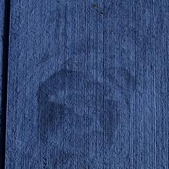 treadmark (vertblu) Tags: pavement shoeprint gap joint texture textur texturesquared blue deepblue dirt contaminants treadmark abstract abstrakt abstraction abstracted abstractsquared vertblu tilted bsquare 500x500 monochrome