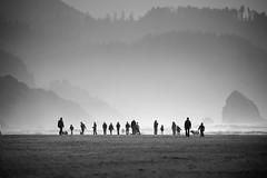 (sparth) Tags: blackwhite blackandwhite bw brouillard noirblanc noiretblanc nb beach canon 2010 sparth