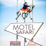 Motel Safari thumbnail