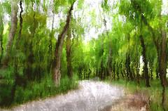 Let go today... (LotusMoon Photography) Tags: woods impressionist icm postprocessed manipulated filterforge forest road fall painterly artistic digitalart digital arboretum path annasheradon lotusmoonphotography