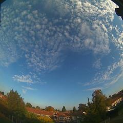 Bloomsky Enschede (October 16, 2018 at 04:52PM) (mybloomsky) Tags: bloomsky weather weer enschede netherlands the nederland weatherstation station camera live livecam cam webcam mybloomsky