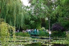 Os Jardins de Monet (Sereiazinha Si) Tags: jardim garden lago lagoa lagoon árvore tree ponte bridge monet giverny frança europa passeio beleza planta plant flor flores flowers barco boat