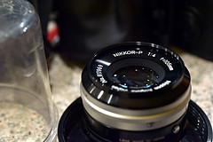 Nikkor-P (fluffnik) Tags: nikond750 afmicronikkor60mmf28 60mm nikkorp105mmf4 macro 105mm