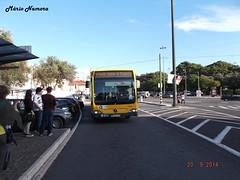 CCFL 4604 Mercedes-Benz Citaro G 96 - GL - 82 Belém [ 4 ] (madafena1) Tags: ccfl 4604 mercedesbenz citaro g autocarro lisboa