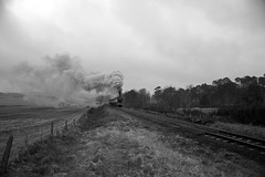 SVR 81478bw (kgvuk) Tags: svr severnvalleyrailway train railway heritage preservation safaricurve locomotive steamlocomotive steamtrain steamengine 8572 460 lner b12
